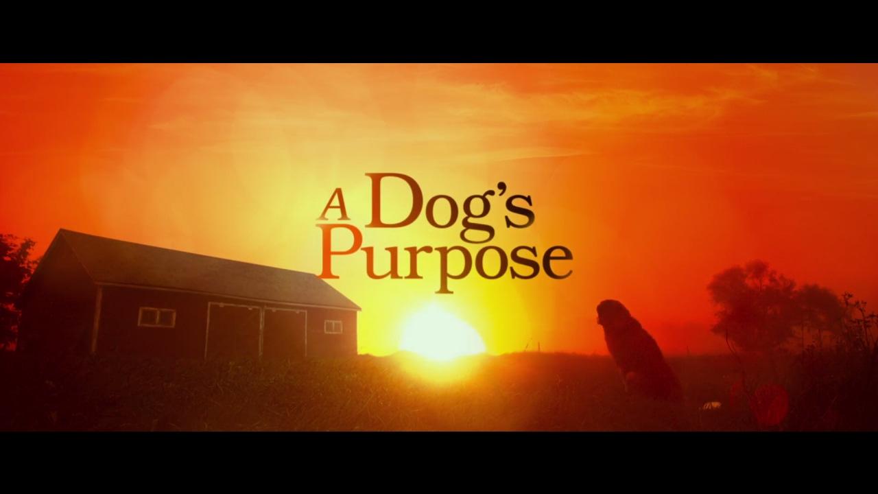 A Dog's Purpose Trailer NL