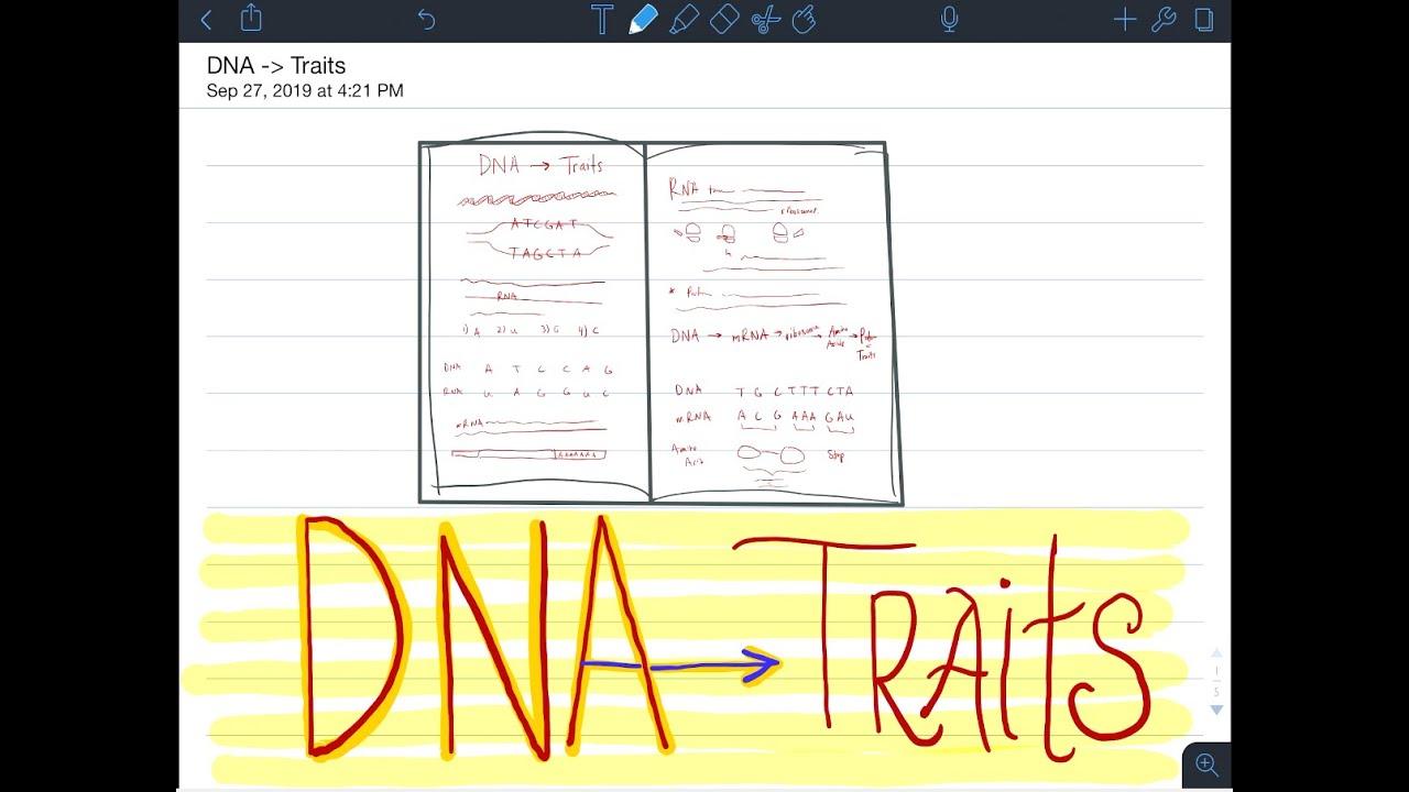 Cheap thesis statement ghostwriter website online