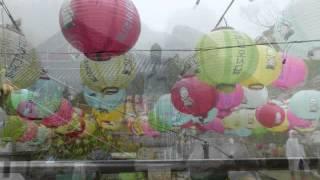 2014 4 韓国旅行 釜山から南海&宝城 茶園