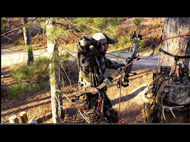 Trophyline Tree Saddle Demo with the Initial Ascent Pack