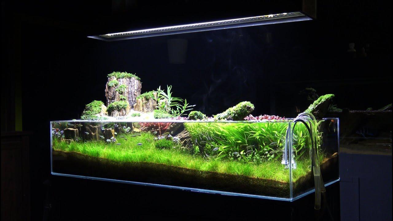 تصميم حوض نباتي بإرتفاع 20سم - Aquascape Tutorial - YouTube