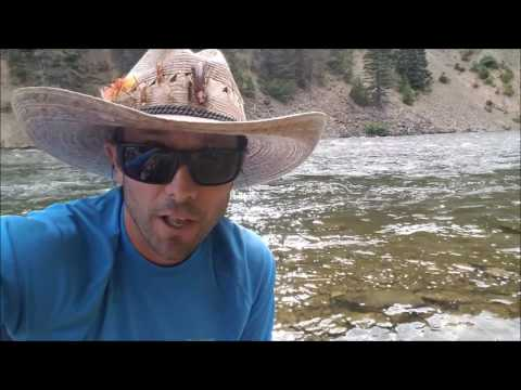 Dirty Fly Fishing Trick For Trophy Trout