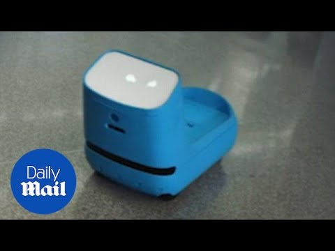 KLM Royal Dutch Airlines trails new luggage-carrying robot - Daily Mail
