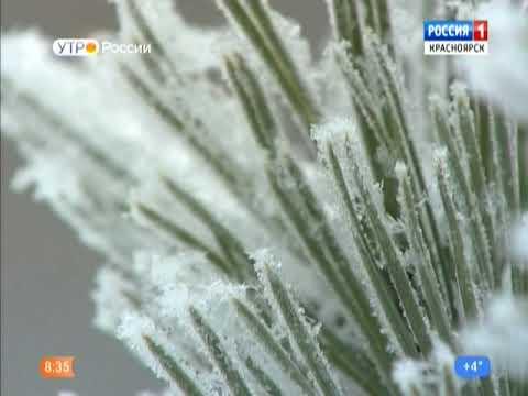 Гидрометцентр России предупреждает сибиряков об ухудшении погоды