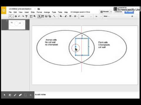 Venn Diagram In Google Slides Youtube