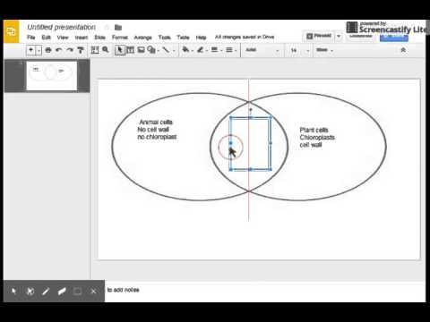 Venn diagram in Google slides  YouTube