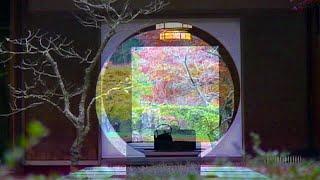 明月院,紅葉,本堂円窓(丸窓)奥庭園特別公開,鎌倉江ノ島観光
