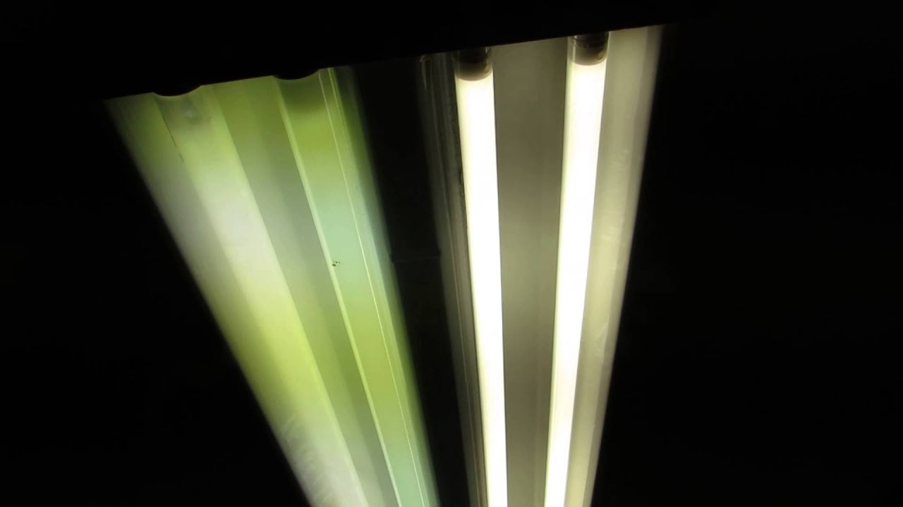 Video Review Of Feit Electric 937743 Led 4 Ft Fluorescent