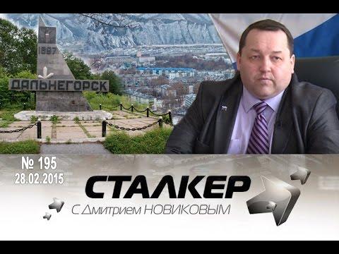 программа сталкер скачать - фото 11