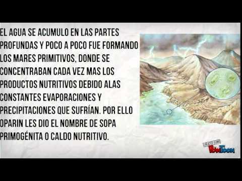 ALEXANDER OPARIN -SINTESIS ABIOTICA-