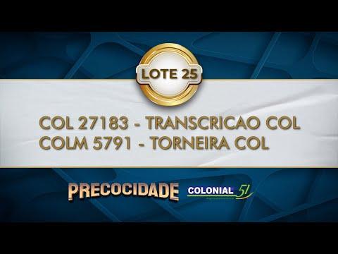 LOTE 25   COL 27183, COLM 5791