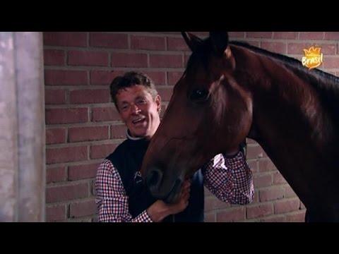 Springruiter Jeroen Dubbeldam: Ik ben de favoriet - RTL BOULEVARD