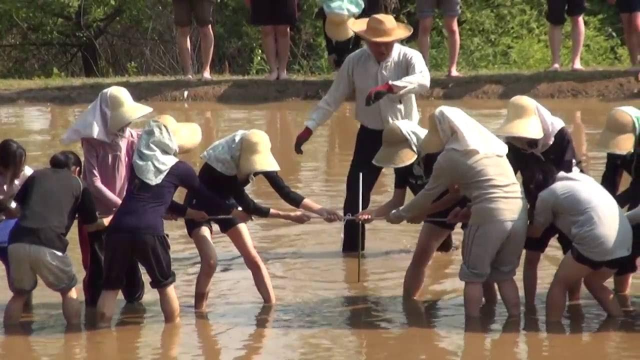 なのはなファミリー活動紹介 その6「泥んこ綱引き大会」