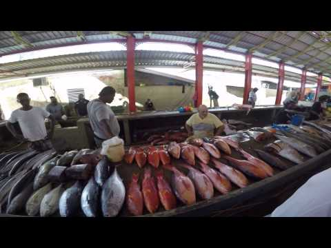 Seychelles Fish Market 10.04.17