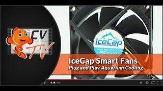 IceCap Smart Fan: Plug & Play Aquarium Cooling