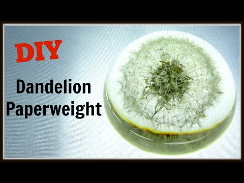 DIY How to make a Dandelion Paperweight ~ Craft Klatch How To