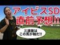 【2018年競馬】超万馬券的中得意男のアイビスSD直前予想!!