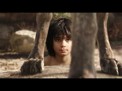 Download Shere khan give warning to mowglihindi the jungle book shere khan entry scene