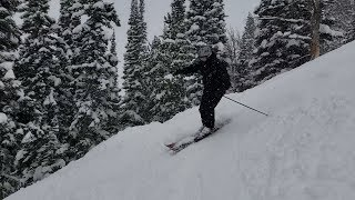 Jackson Hole Mountain Resort January 2019 - 1/7/2019