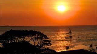 Michael Watford - Never (Pex Africah Mix)