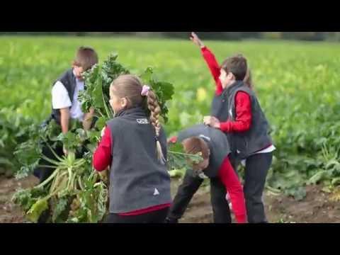 Finalist Bayer / Leaf Education Primary School Partnership Award: Euston Estate, Suffolk