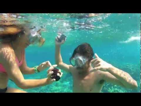 My World Under The Sea - Hawaii
