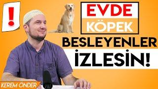 Evde Köpek Besleyenler Izlesin!   Efektli Video  / Kerem Önder