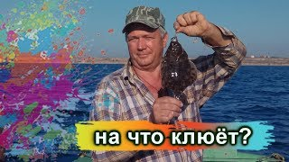 ЛУЧШАЯ НАСАДКА для ловли морской рыбы.