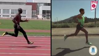 12.- Técnica de carrera para corredores de resistencia