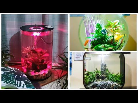 Three Beautiful Biorb Aquariums