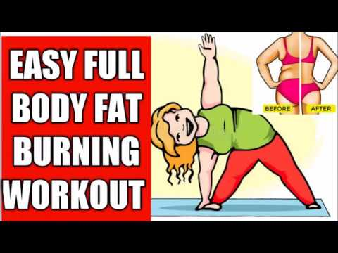 full body fat burning workouteasy fat burning workout
