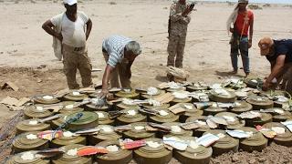 أخبار عربية - #الحوثيين زرعوا الآف #الألغام في ساحل #اليمن الغربي