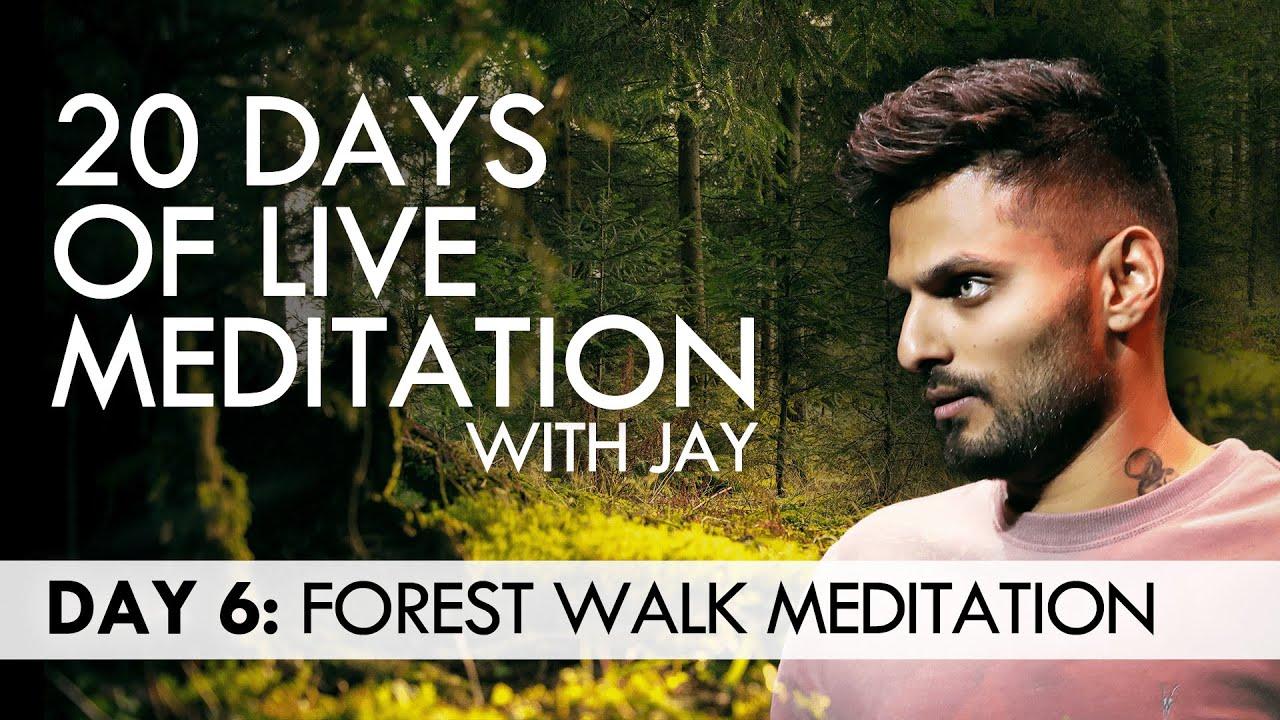 20 Days of Live Meditation with Jay Shetty: Day 6 - YouTube