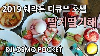 쉐라톤 디큐브시티 호텔 딸기뷔페 2019 / DJI 오…