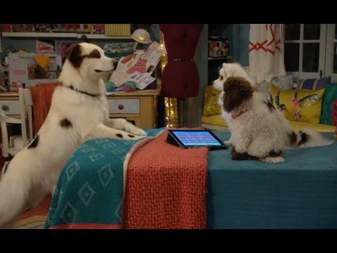 Сериал Disney - Собака точка ком (Сезон 1 Серия 19)