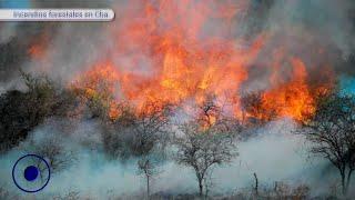 Infierno en Córdoba: Incendios forestales