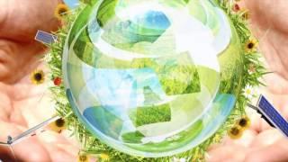 метапредметные дни, посвящённые году экологии 2 классы