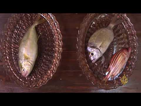 هذا الصباح- كيف تستطيع التفريق بين السمك الطازج وغيره؟  - نشر قبل 57 دقيقة