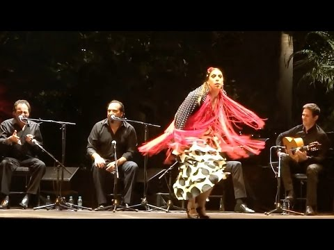 Flamenco by Fuensanta