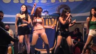 HOT NEW SURYA NADA - DANGDUT JAMAICA_ALL ARTIS