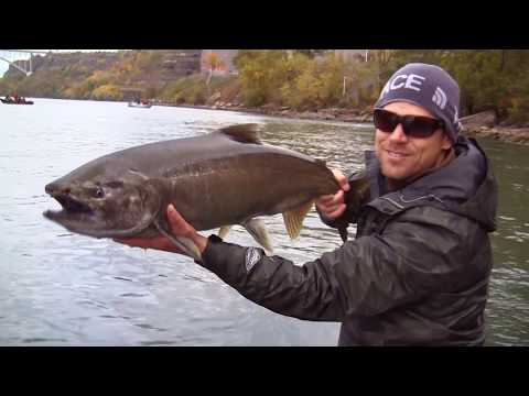 A Year Of Fishing In Buffalo, NY | Niagara, NY : Rediscover Your Region 10