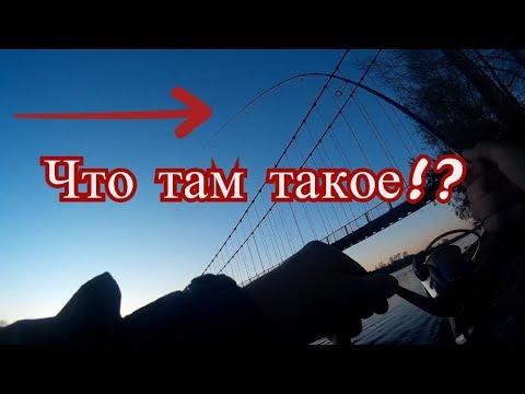 Рыбалка на реке Катунь. ШОК! - YouTube