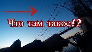 Рыбалка на реке Катунь. ШОК!