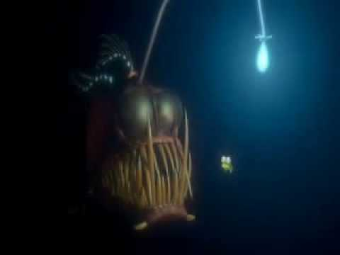 Fish above fish youtube for Finding nemo angler fish