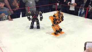 Robogames 2016: 3D printed robot KungFu