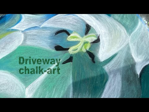 Driveway chalk-art: A Muscarelle competition