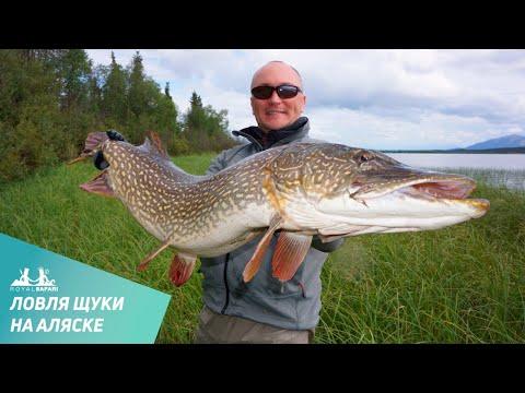 Расширяем горизонты рыбалки в России !!!  Крым, Аляска ...