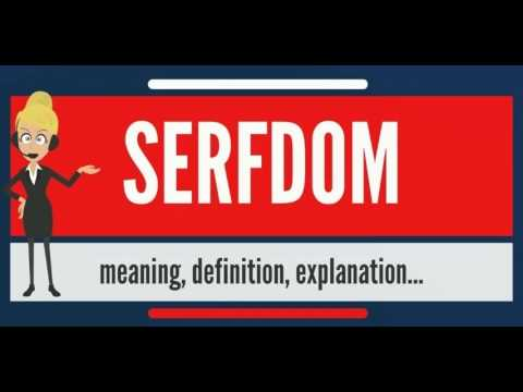 What is SERFDOM? What does SERFDOM mean? SERFDOM meaning, definition & explanation