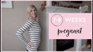 7-8 WEEKS PREGNANT W/ TWINS   MORNING SICKNESS , ULTRASOUND & HEARTBEATS, MORE BLEEDING & BELLY SHOT