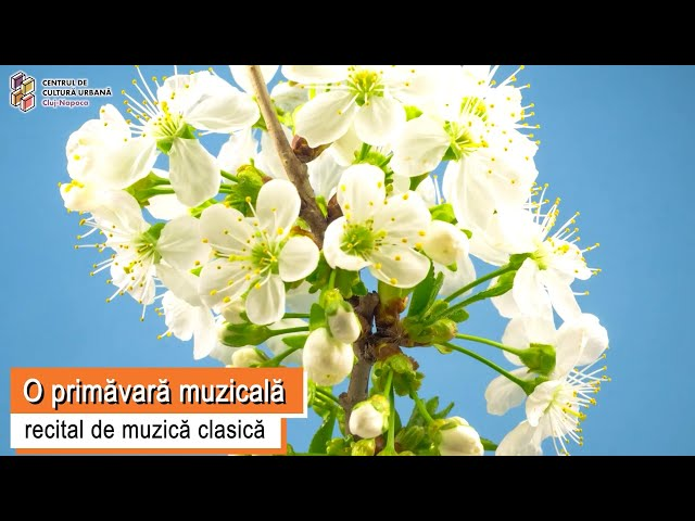 O primăvară muzicală - recital de muzică clasică